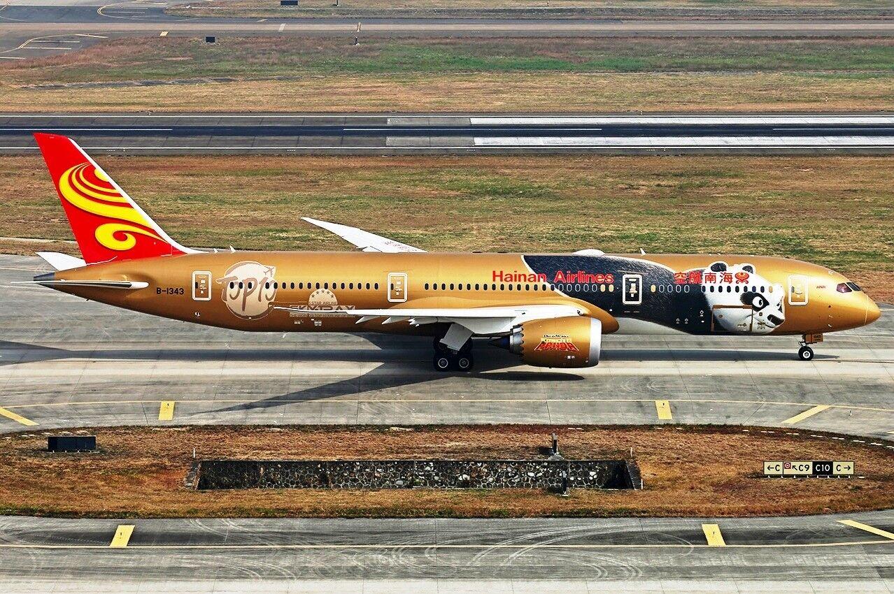 JC2068 1/200 Hainan Airlines Boeing 787-9 Dreamliner B-1343 kung fu panda avec STD | Laissons Nos Produits De Base Aller Dans Le Monde  | Pour Votre Sélection  | Terrific Value