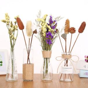 15 stück Getrocknete natürliche Blumen Dekor Pampas Gras Dry Tail Zuhause Dekor