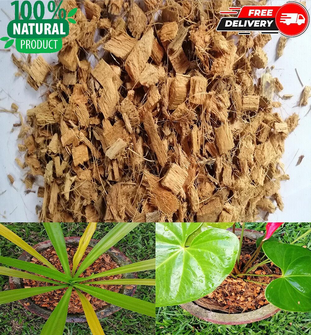 Coconut Husk Chips Fiber Hydroponic grow plants Soil bedding Anthurium Ceylon