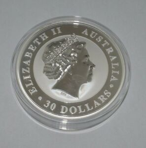 2013 Elizabeth Ii Silver Coin 30 1kg 999 Silver