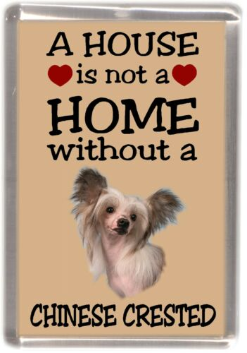 """Chinese Crested No 1 Fridge Magnet /""""A HOUSE IS NOT A HOME/"""" by Starprint"""