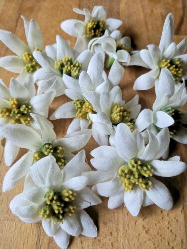 12 x Edelweiß 6cm Landhausstil Blüten Landhaus Kunstblume Landhaus Blumen Weiß