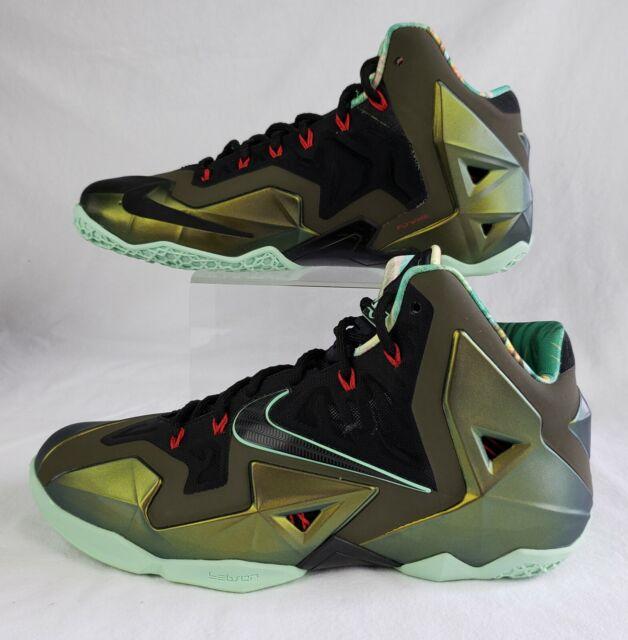 Nike Lebron 11 XI Kings Pride Sz 15