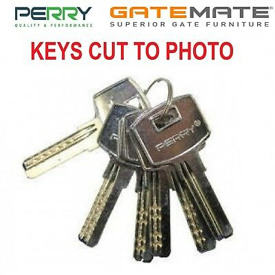 Concise Gate Lock Key Cutting to Photo Gatemate Perry