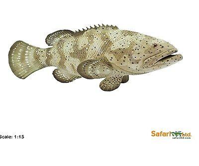 Goliath-Barsch 5 1//2in Series Water Creature Safari Ltd 265329