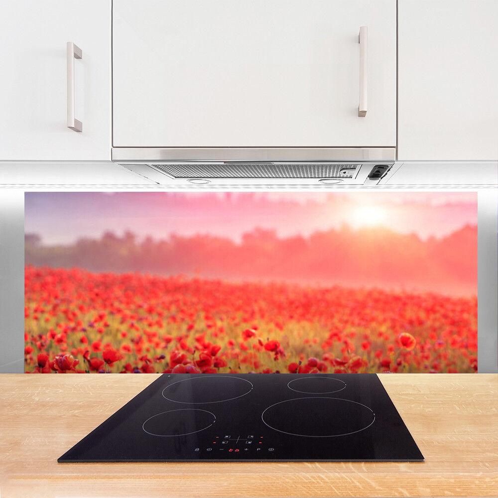 Crédence de cuisine en en en verre Panneau 125x50 Nature Prairie Fleurs 6ffec7
