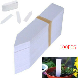 100Pcs-Plastic-Plant-Labels-Marker-Nursery-Stake-Tags-Garden-Accessories-10x2cm