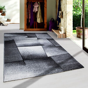 design-moderne-COUPE-CONTOUR-Tapis-abstrait-lignes-salon-gris-chine