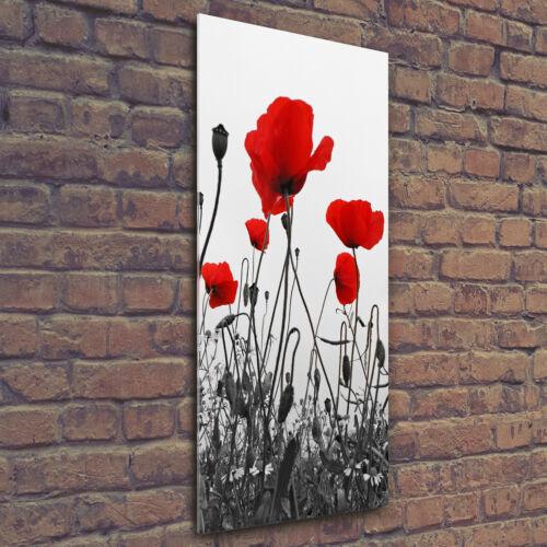 Wand-Bild Kunstdruck aus Hart-Glas Hochformat 50x125 Feldmohn Blumen