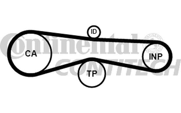 CONTITECH Kit de distribución VOLKSWAGEN TOUAREG AUDI A4 A6 A8 Q7 A5 CT1094K1