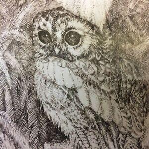D. Thomson Owl Pen Ink Drawing Signed & Numbered 11/50 Framed
