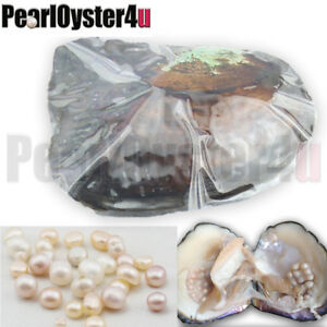 Big-Monster-Oyster-20-30-Natural-Pearls-6-10-Years-Best-Party-Gifts