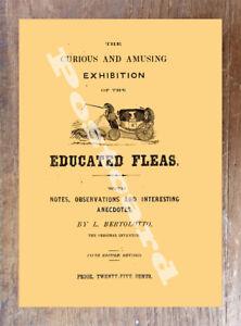 Historic-Flea-Circus-Advertising-Postcard