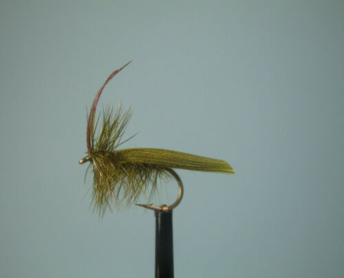 3 X OLIVE HORNED SEDGE DRY TROUT FLY size 12  SDP37