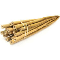 Lot Of 10 / 25 Bamboo Stakes 3 / 4 / 6 Ft Lengths Vegetable Garden Tomato Herb