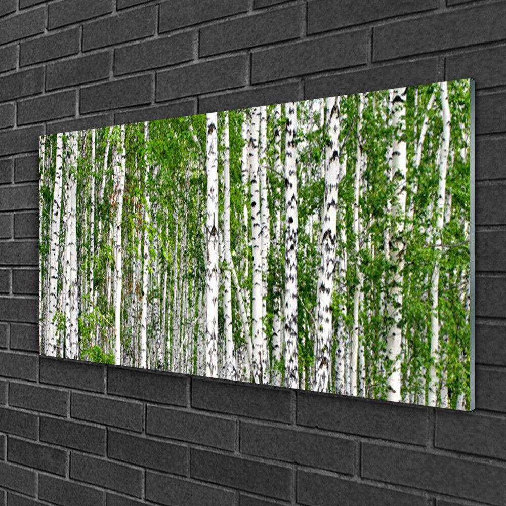 Wandbilder aus Plexiglas® 100x50 Acrylglasbild Birken Wald Bäume Natur