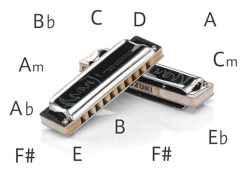 【44variations】 Suzuki MANJI M-20 A B C D E F G flat Nm CT 10-Hole Harmonica JPN
