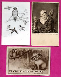 Gufo-Lotto-di-8-Vintage-Cartoline-375