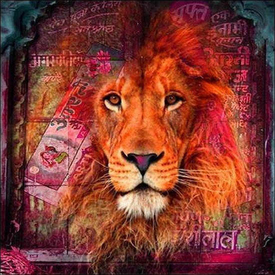 Mascha De I Haas Lion I De Image Chassis Toile Lion Moderne Pop
