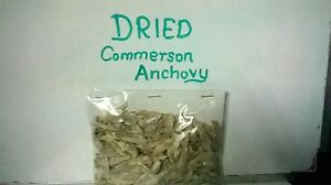 Moms-Dried-Commerson-Anchovy