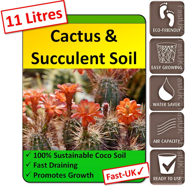 11 Litres Cactus & Succulent Potting Soil - Fast Drain Compost Blocks for Cacti