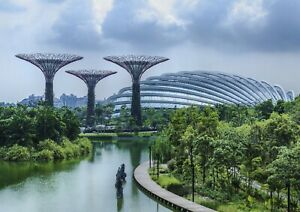 A1-Gardens-by-the-Bay-Singapore-Poster-Art-Print-60-x-90cm-180gsm-Gift-13040