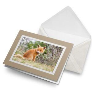 Greetings-Card-Biege-Ginger-Baby-Fox-Cub-Animal-15612