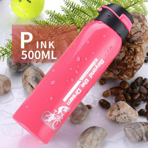 304 Stainless Steel 500ML Drink Vacuum Insulated Summer Sports Water Bottle Gift
