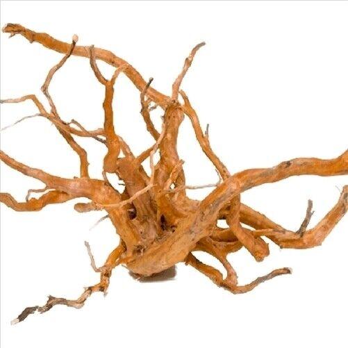 Gold Vine Spider Wood Small 10-15Cm Aquarium & Reptile Driftwood Spiderwood Gold