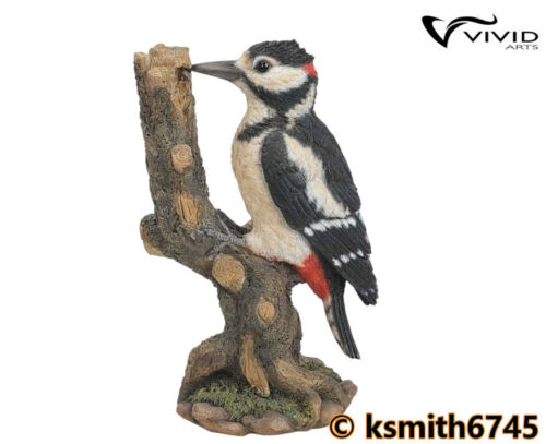 Vivid Arts SPOTTED WOODPECKER resin ornament animal garden bird NEW