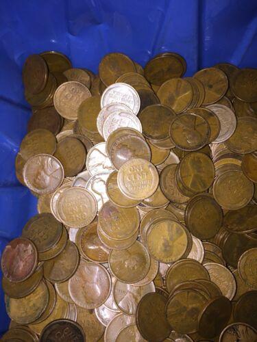 TEEN WHEATS  All Dated 1916-1919 P MINT 10 Rolls 500 Coins#1