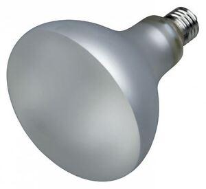 """Trixie Composés Lumière Lampe Prosun Mixed D3, Uv-b Lampe, Diverses Tailles-e Prosun Mixed D3, Uv-b Lampe, Diverse Größen"""" Data-mtsrclang=""""fr-fr"""" Href=""""#"""" Onclick=""""return False;"""">afficher Le Titre D'origine Qwb0eydf-10123729-507207501"""