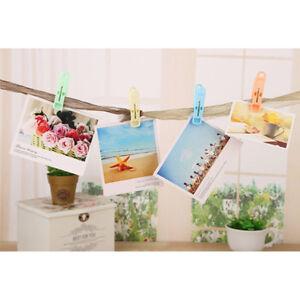 Windbreaker-Strong-clip-Plastic-clothes-clip-Pins-Hanging-Pegs-Food-Bag-20Pcs-DS