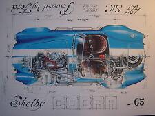 SHELBY COBRA FORD 427 1965 tirage numéroté et signé