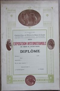 1930s-Poster-Diploma-Belgian-Kennel-Dog-Club-Chow-Chow-Songshi-Quan
