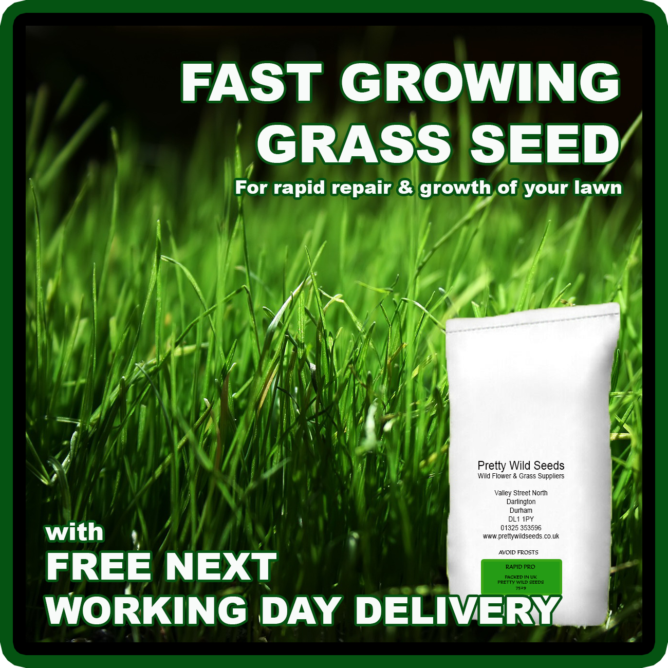 Fast Growing Rapid Lawn Grass Seed Quick Fix Repair Pets dogs Kids 1-500kg