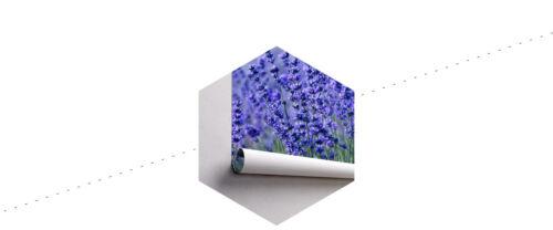 VLIES FOTOTAPETE XXL TAPETE Natur Lavendel Wiese BLUMEN 8332