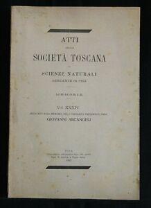 ATTI-DELLA-SOCIETA-039-TOSCANA-IN-SCIENZE-NATURALI-Vol-XXXIV-AA-VV-Tip-Nistri