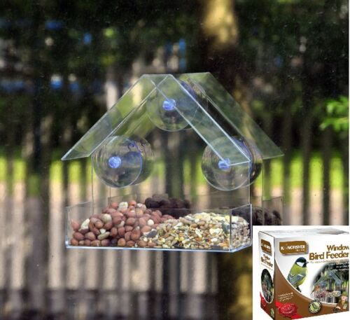 BIRD FEEDER GLASS WINDOW CLEAR VIEWING SEED PEANUT HANGING SUCTION PERSPEX BFWIN