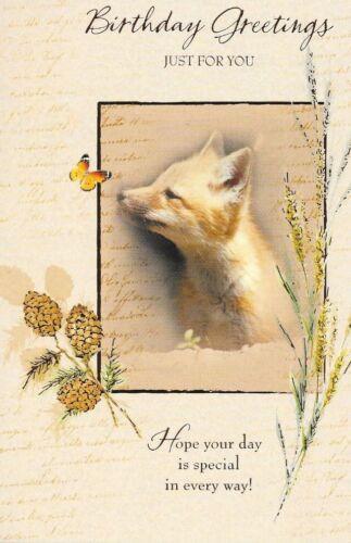 pays faune Photographie carte d/'anniversaire qualité supérieure thème U1 fox