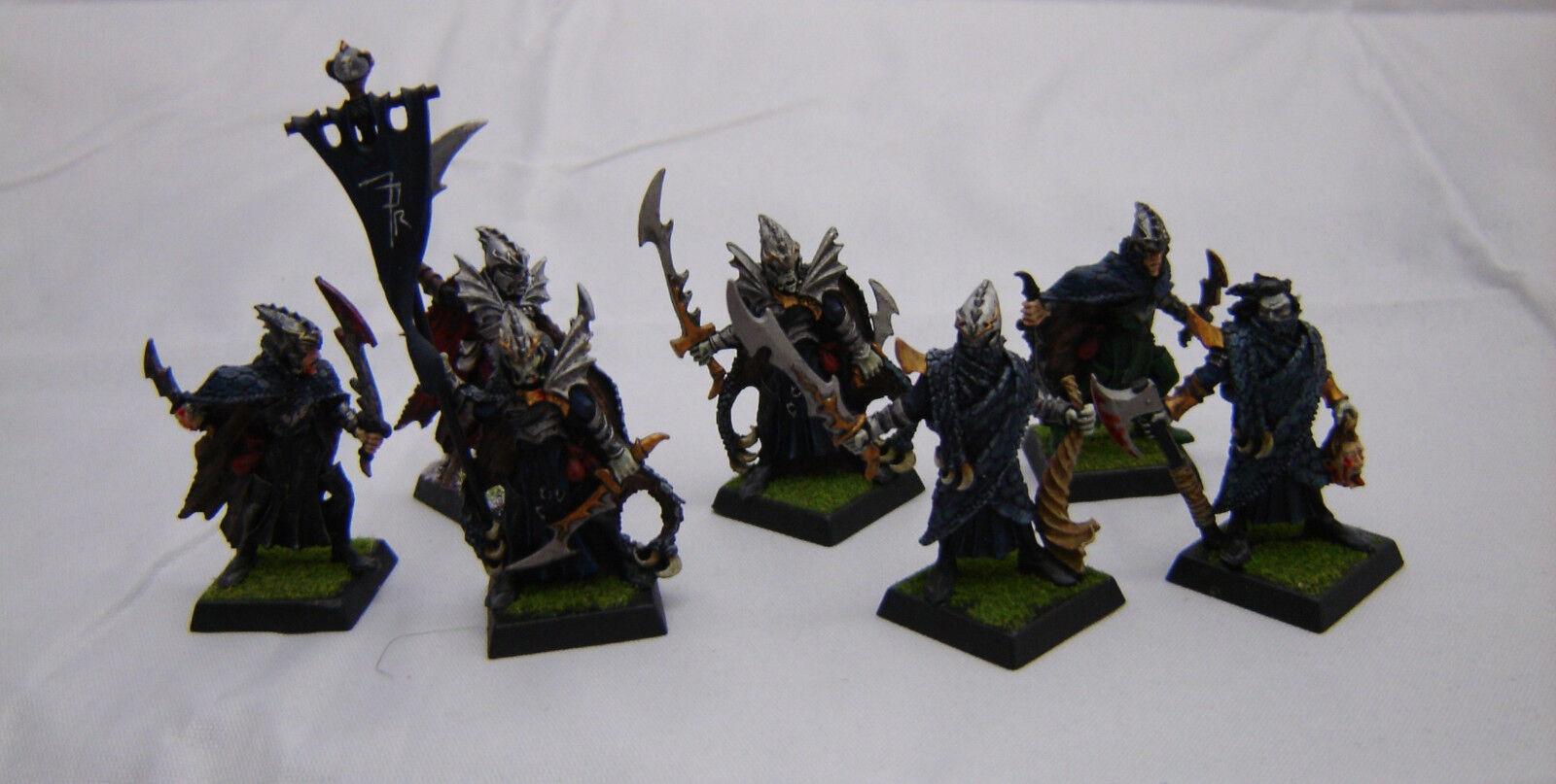 Warhammer Dark Elf  Corsairs army lot well painted