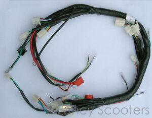 PEACE SPORTS TPATV512/CPSC Whole Wire harness 110CC, Kid Utility Style ATV  (L6A)   eBayeBay