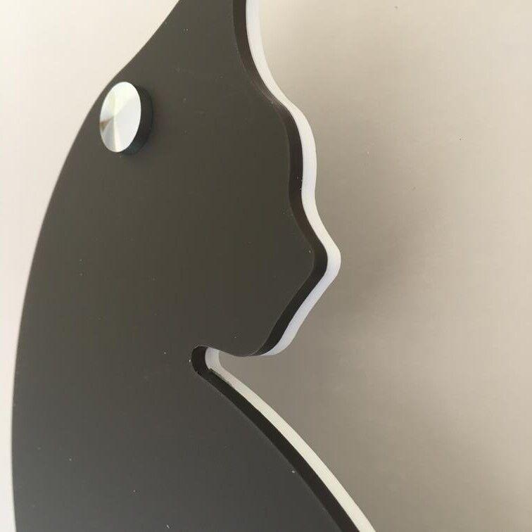 Katze Geformt Hausnummer Zeichen Groß 30cm mit Chrom Befestigung Befestigung Befestigung 64c6ab