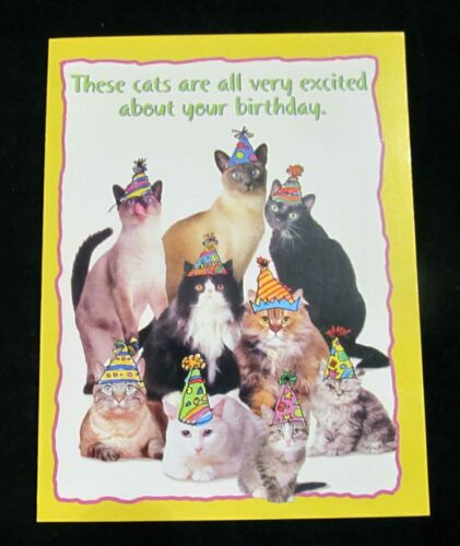 Leanin Tree Birthday Cat Cats Humor Greeting Card Multi Color Notions Series P47