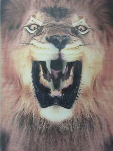 Details about Poster Print 3d picture of a fierce lion, great for Home  Decoration L086