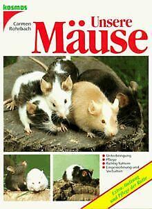 Unsere Mäuse von Carmen Rohrbach   Buch   Zustand gut
