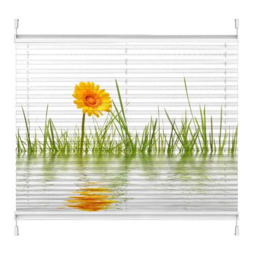 Plissee Motiv Gras Gerbera Wasser Maßanfertigung ohne Bohren Klemmfix Foto-Druck