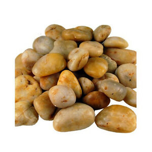 Pebbles And Stones For Gardens 36 lbs amber polished natural river rock pebble stone garden image is loading 36 lbs amber polished natural river rock pebble workwithnaturefo