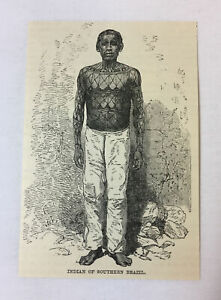 1885-magazine-engraving-TATTOOED-INDIAN-OF-SOUTHERN-BRAZIL