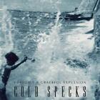 I Predict A Graceful Expulsion von Cold Specks (2012)